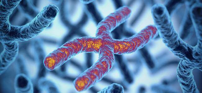 What Are Telomere DNA Tests And How Reliable Are They?